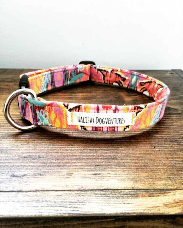 11 Diy Dog Collars For Your Favorite Pooch. 1 Adjustable Dog Collar. Wiring. Homemade Dog Harness Patterns At Scoala.co
