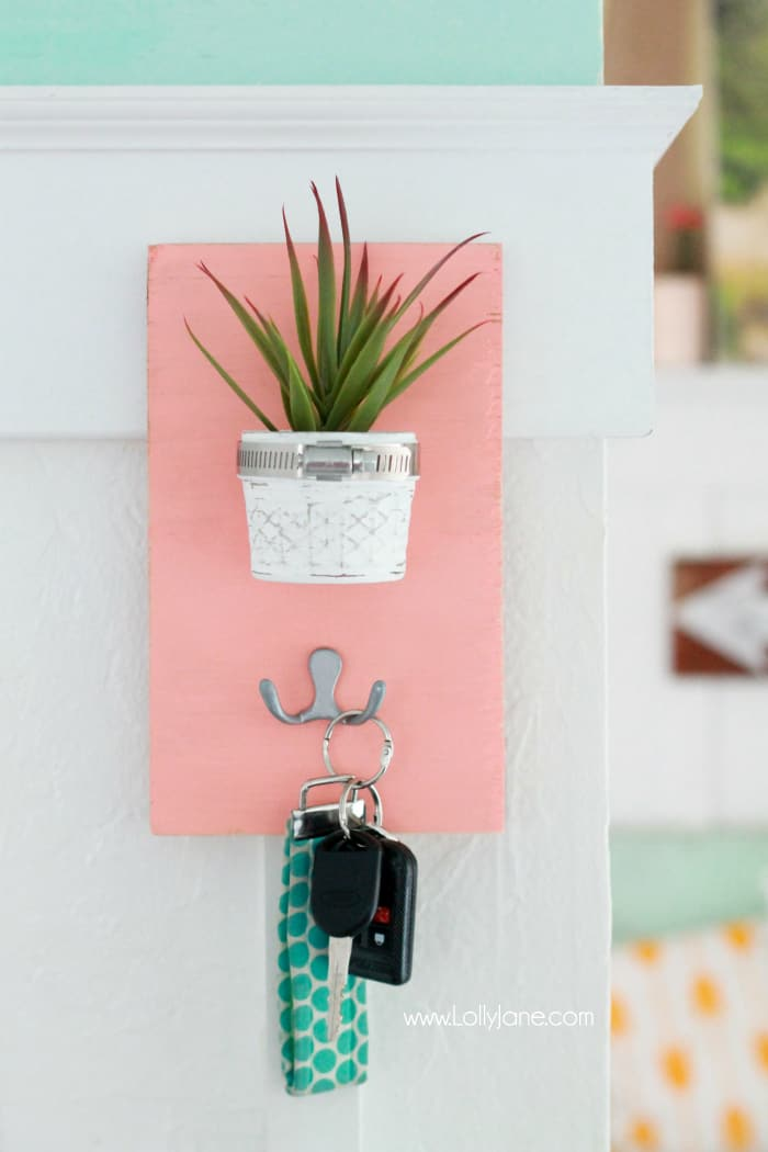 Succulent key holder