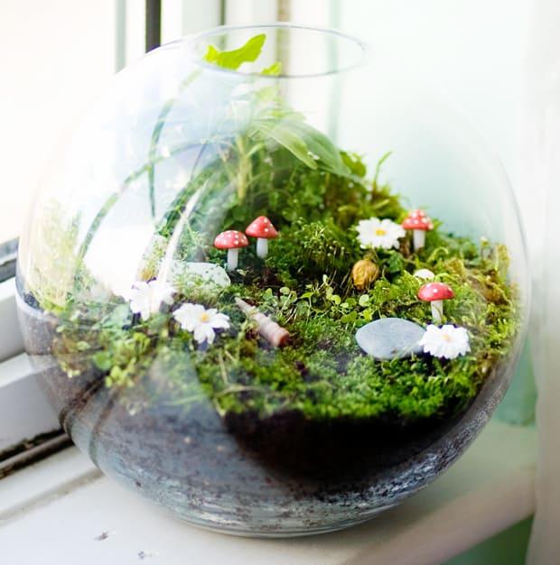 Ecosystem terrarium