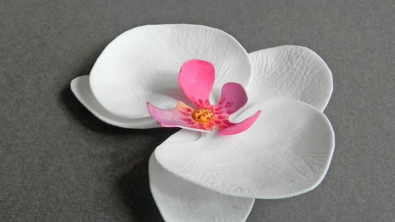Foam paper orchid