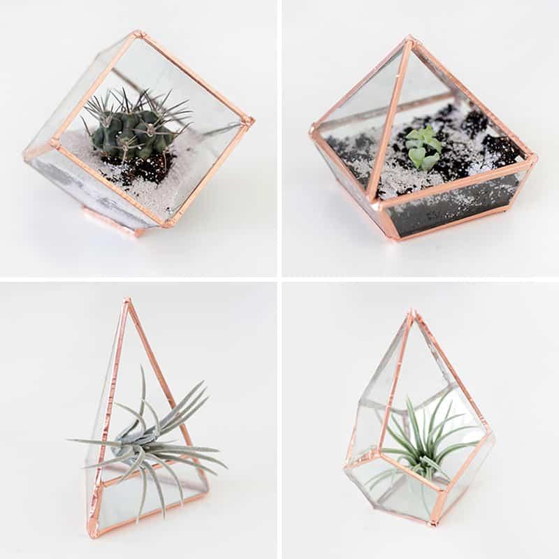 Tiny Glass terrarium