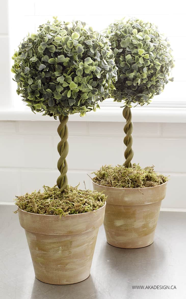 Small And Stunning Diy Topiaries You Ll Want In Your Home