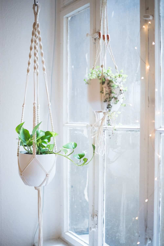 Dynamic macrame plant hanger