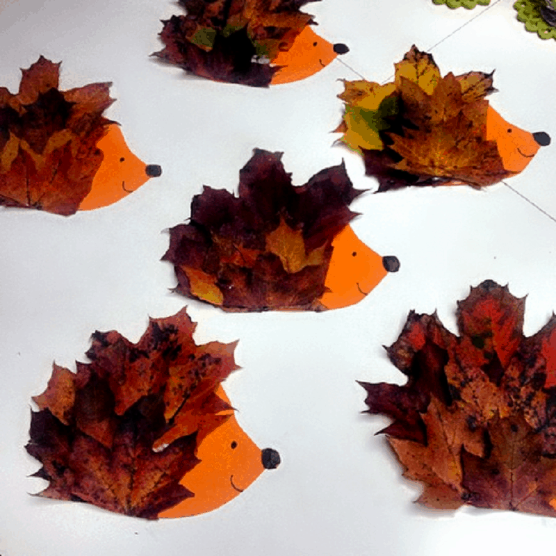 Leaf hedgehogs