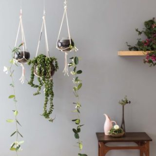 DIY Macrame Plant Holders: A Chic Way to Hang Indoor Plants