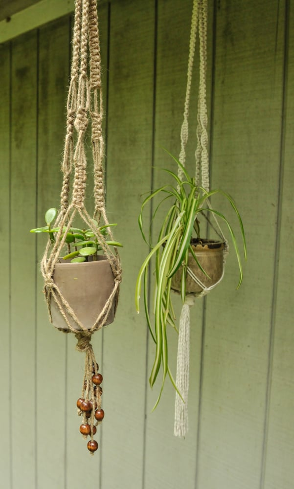 macrame plant hangers diy diy macrame plant holders a chic way to hang indoor plants 9885