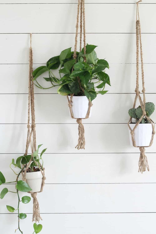 Rustic macrame plant hangers
