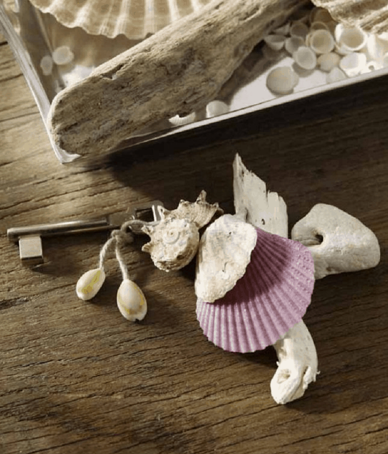 Seashell key chain