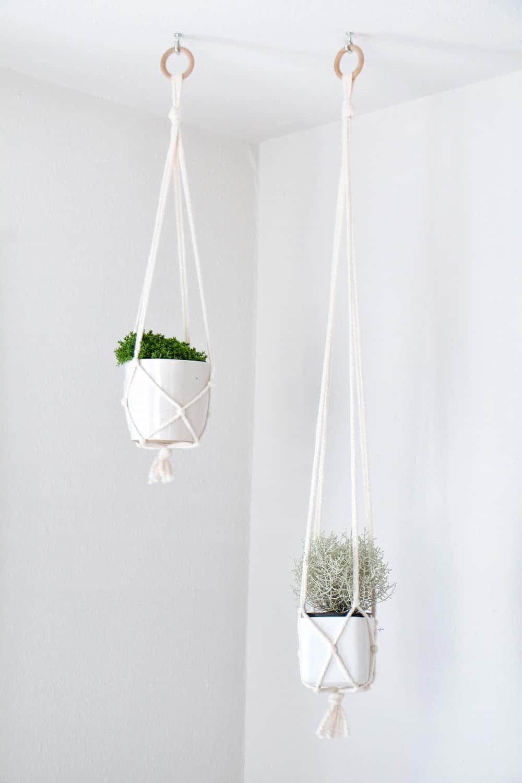 Simple macrame plant hangers