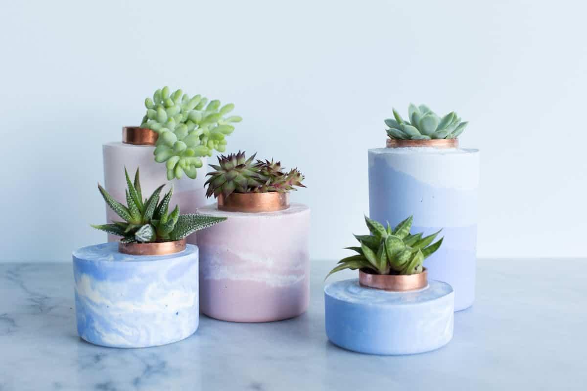 Ombre concrete planters