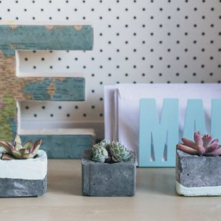 Charming and Innovative: 14 DIY Concrete Planters