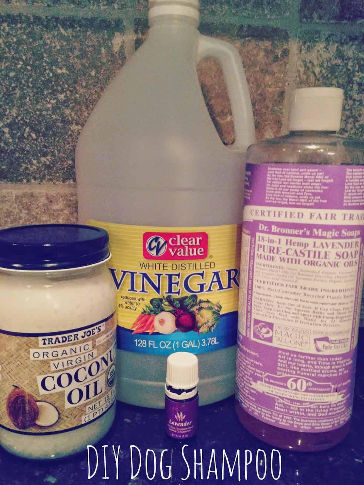 Coconut oil dog shampoo