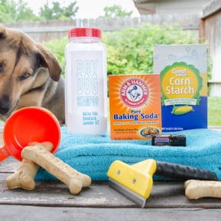 12 DIY Dog Shampoos for Soft and Healthy Fur