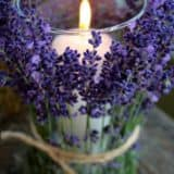 Awesome Purple DIY Ideas You Must Check Out