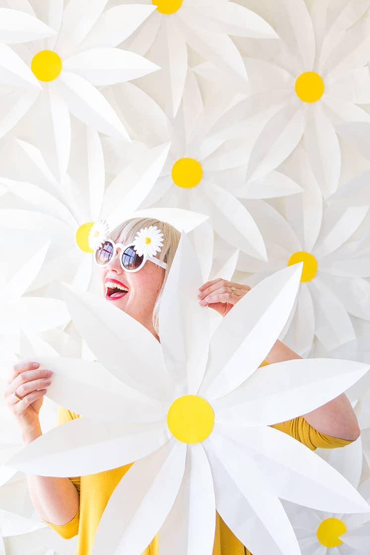 Big paper daisy
