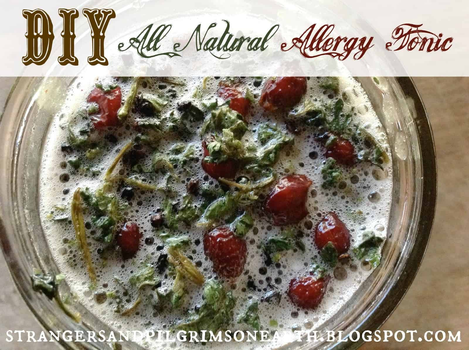 DIY all natural allergy tonic