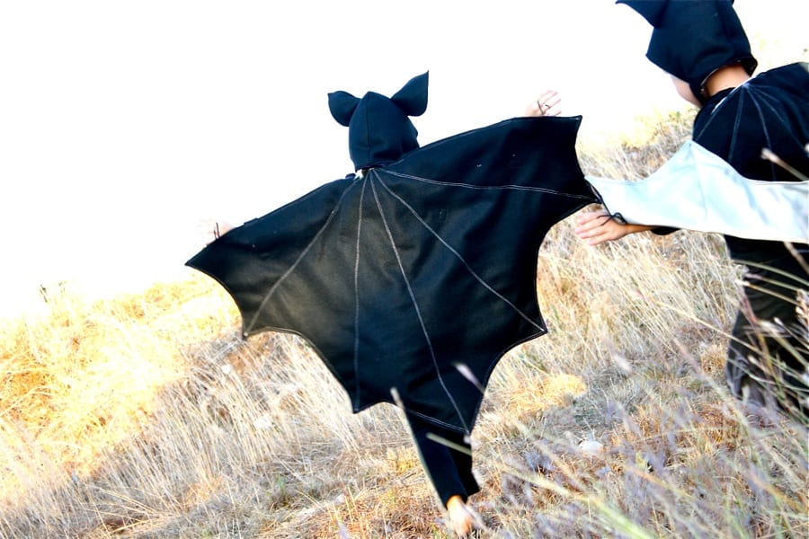 1. Bat wings and ears  sc 1 st  Wonderful DIY & Cute and Cuddly: 12 DIY Animal Costumes for Kids