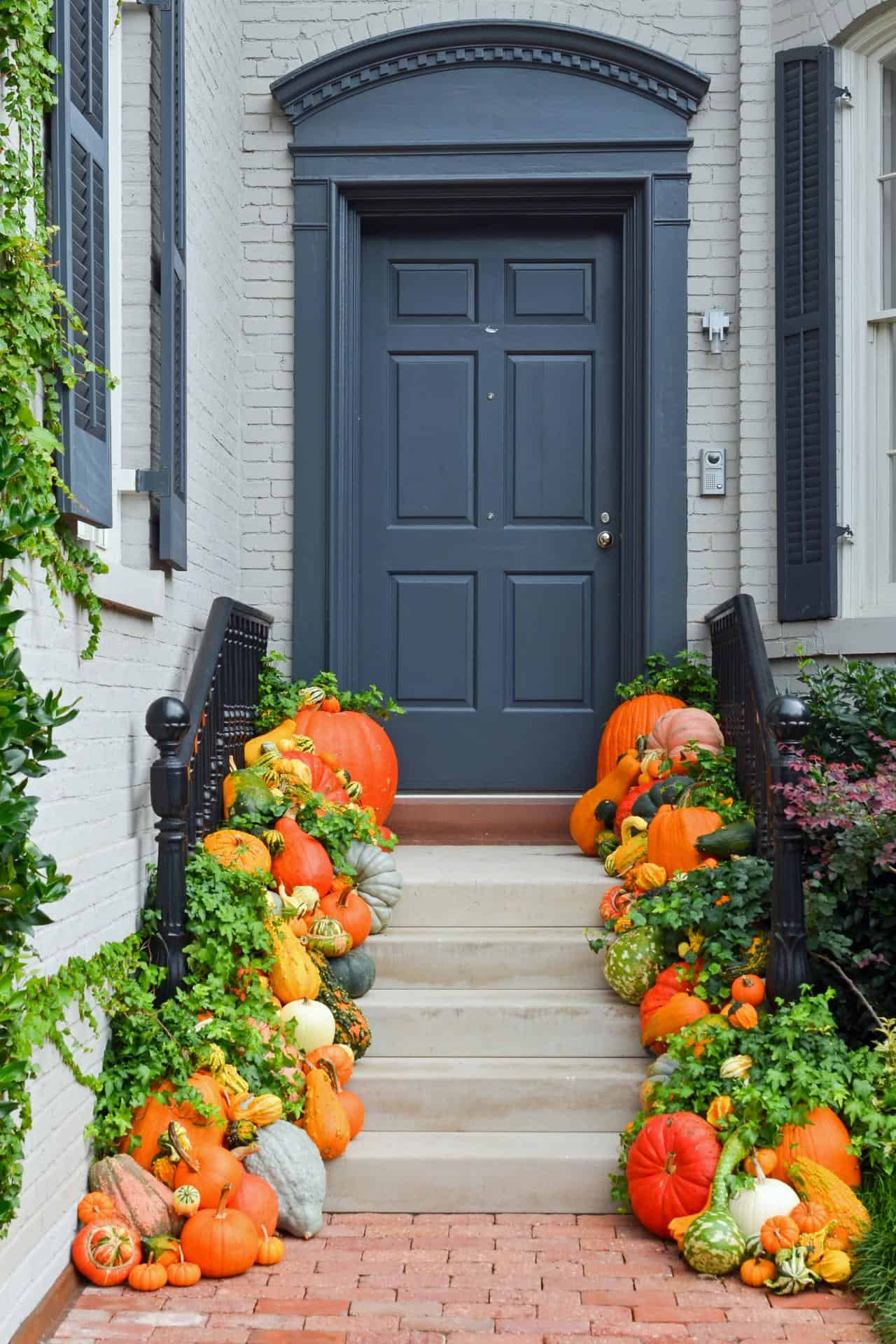 Hoards of pumpkins and gourds 15 Yard Decoration Ideas for Fall