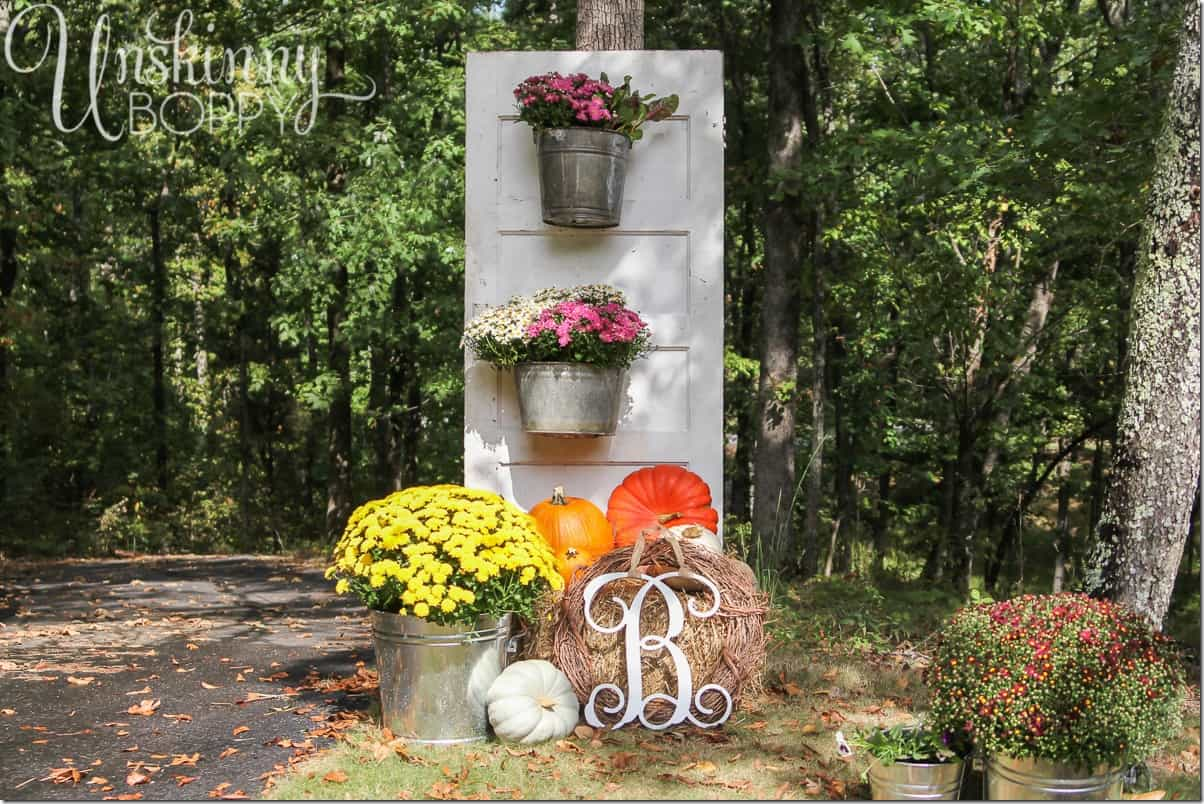 Vintage door with bucket planters and pumpkins