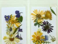 DIY pressed flower stationary  200x150 Dried Flower Decoupage