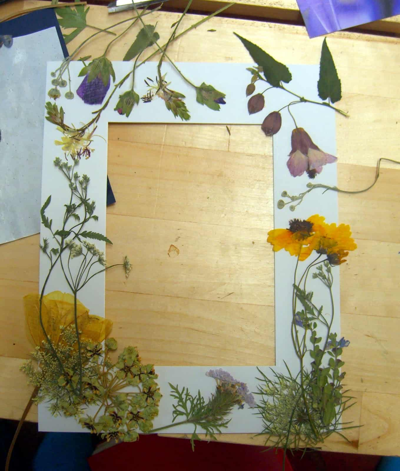 Dried flower frame border insert