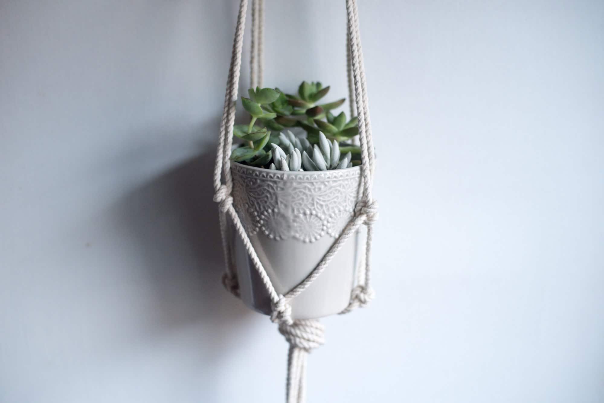 Rope macrame hanging planter