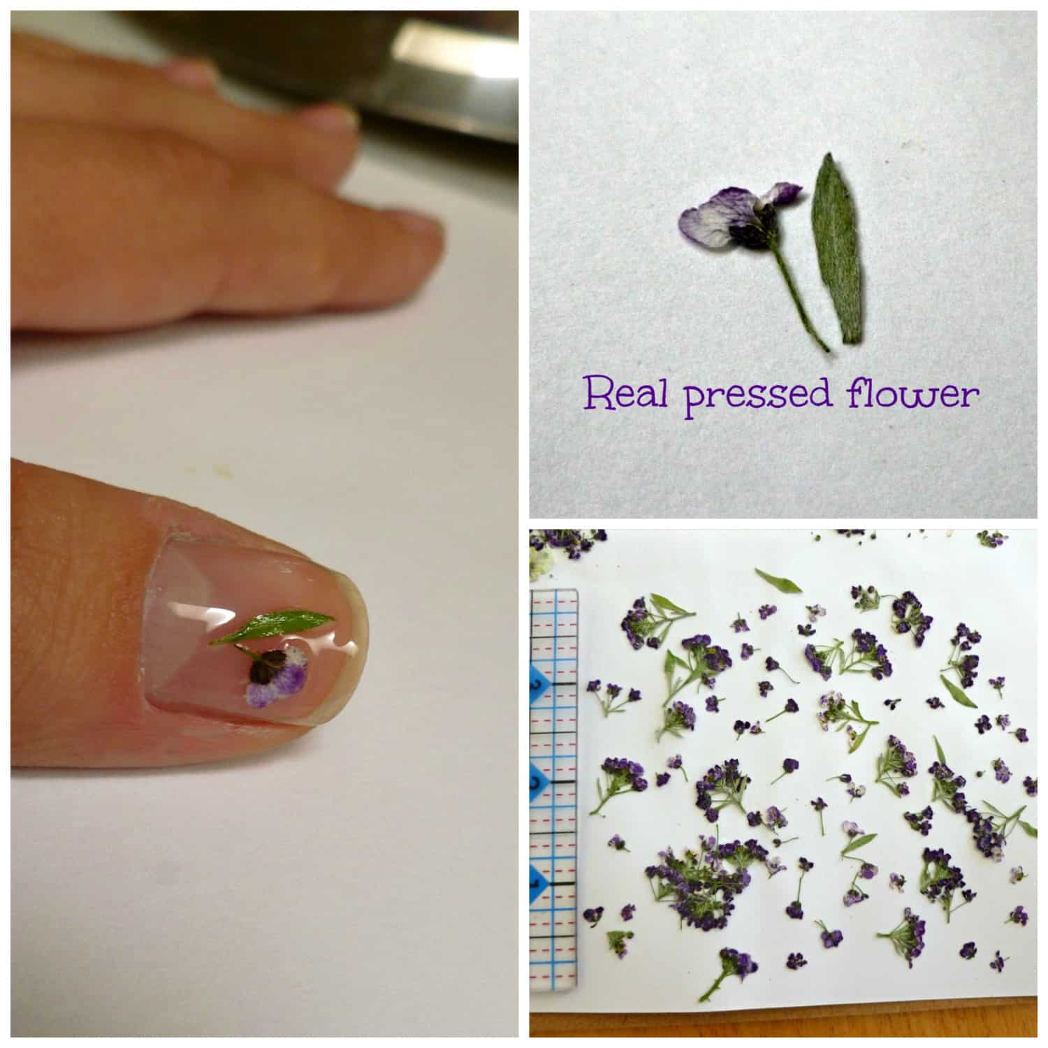Tiny pressed flower manicure