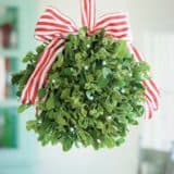 A Holiday Smooch: DIY Mistletoes to Hang Around Your Home