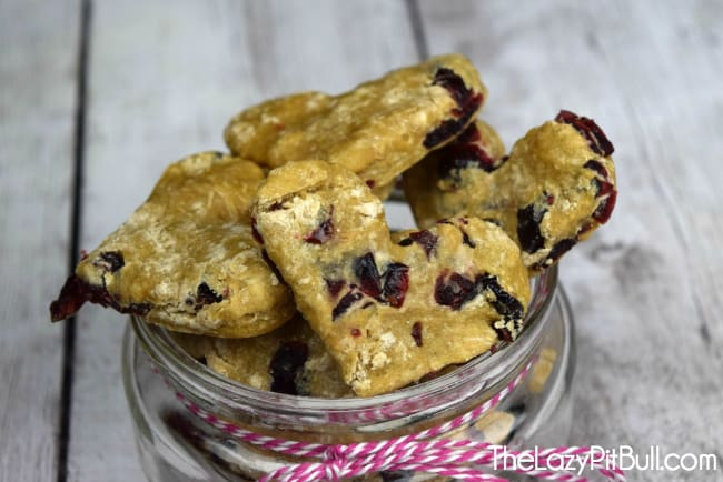 Cranberry dog treats