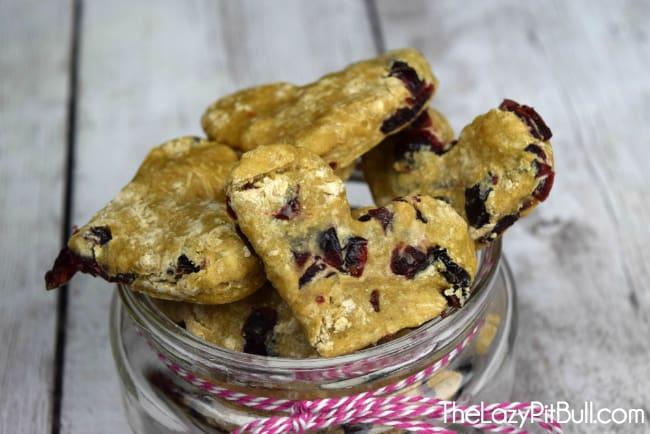 Cranberry dog treats