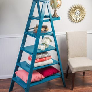 Farmhouse Beauty: 10 DIY Ladder Creations for Your Home
