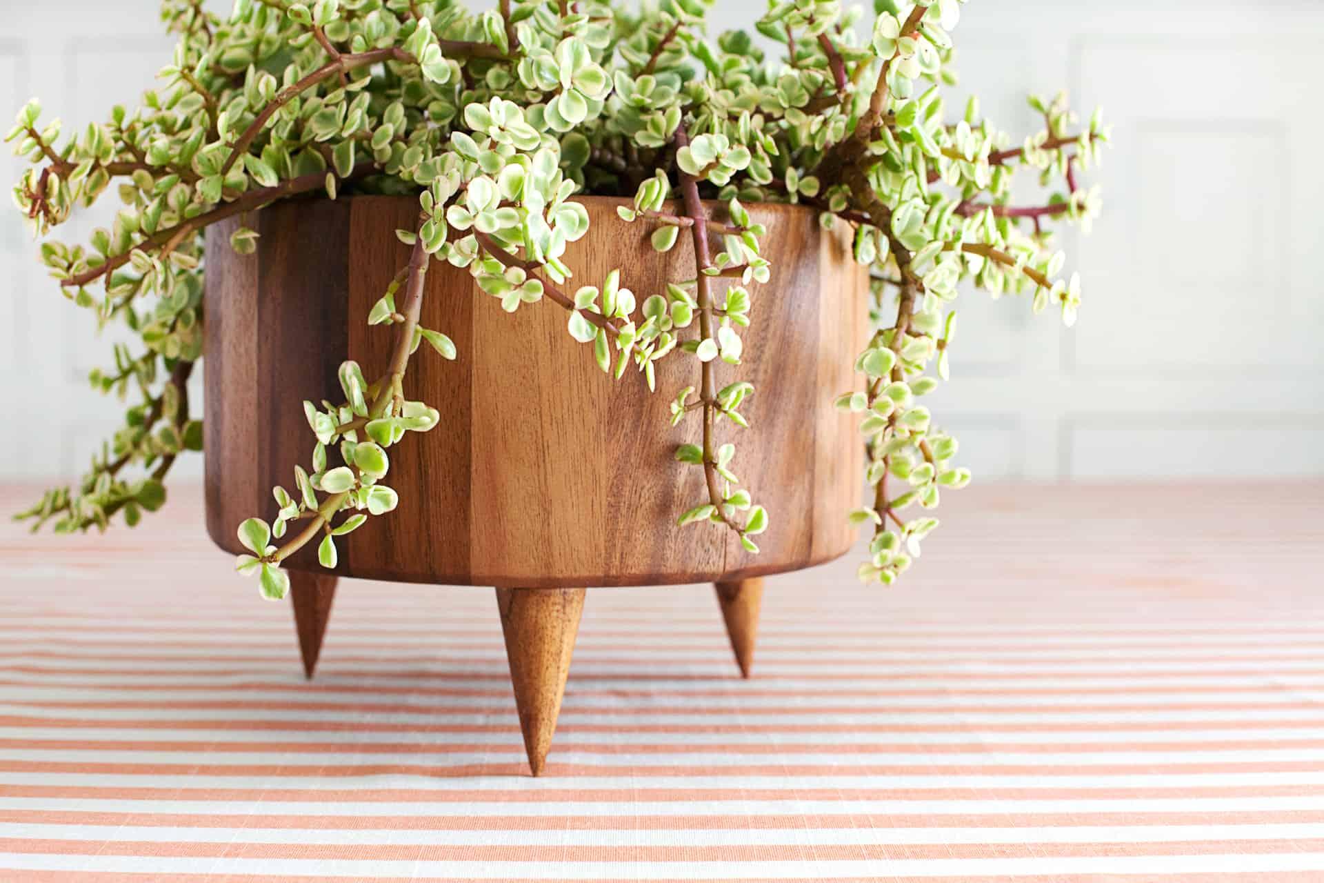 Cone wooden planter