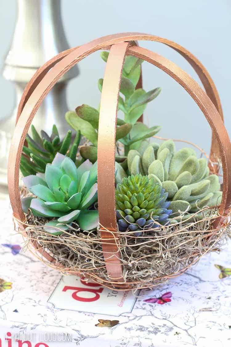 Embroidery hoop terrarium
