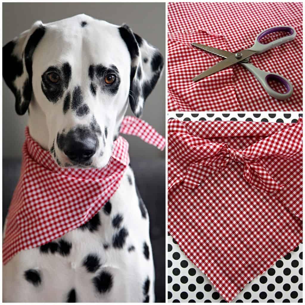No-sew dog bandana