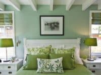 Pretty sage green with darker green accents 200x150 15 Fun Tips for Decorating Your Home with Green