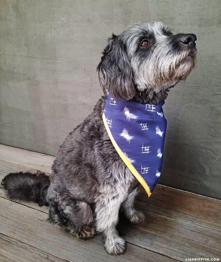 Two fabric dog bandana