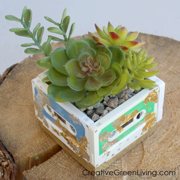 Cassette tape succulent planter