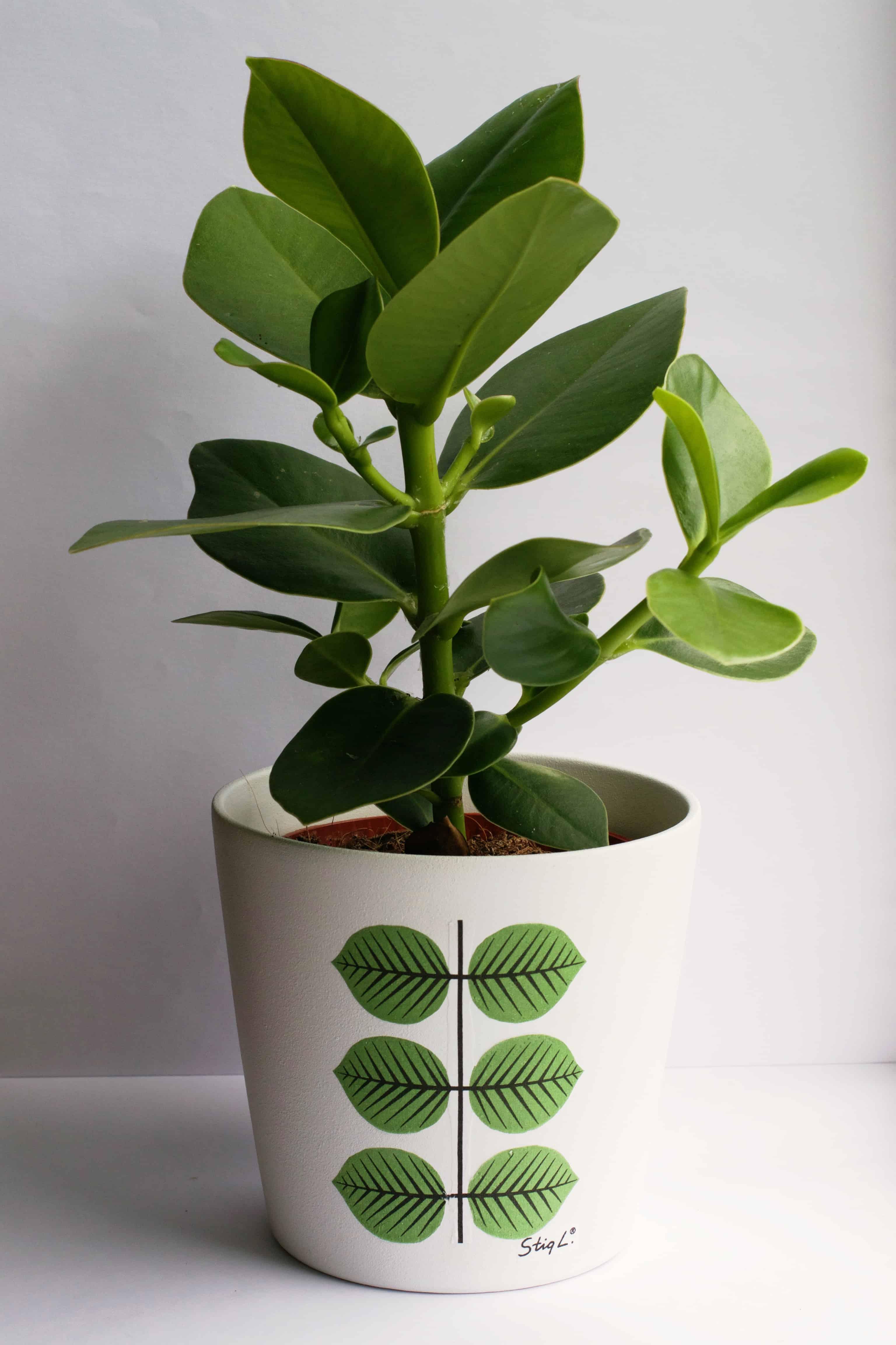 Decoupage planter