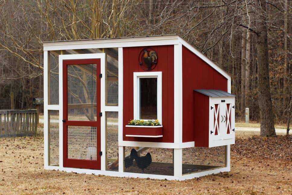Fairytale chicken coop