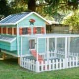 Cozy Farm Life: DIY Chicken Coops