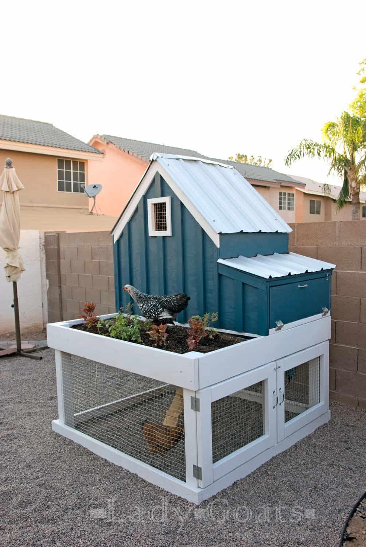 Planter box chicken coop