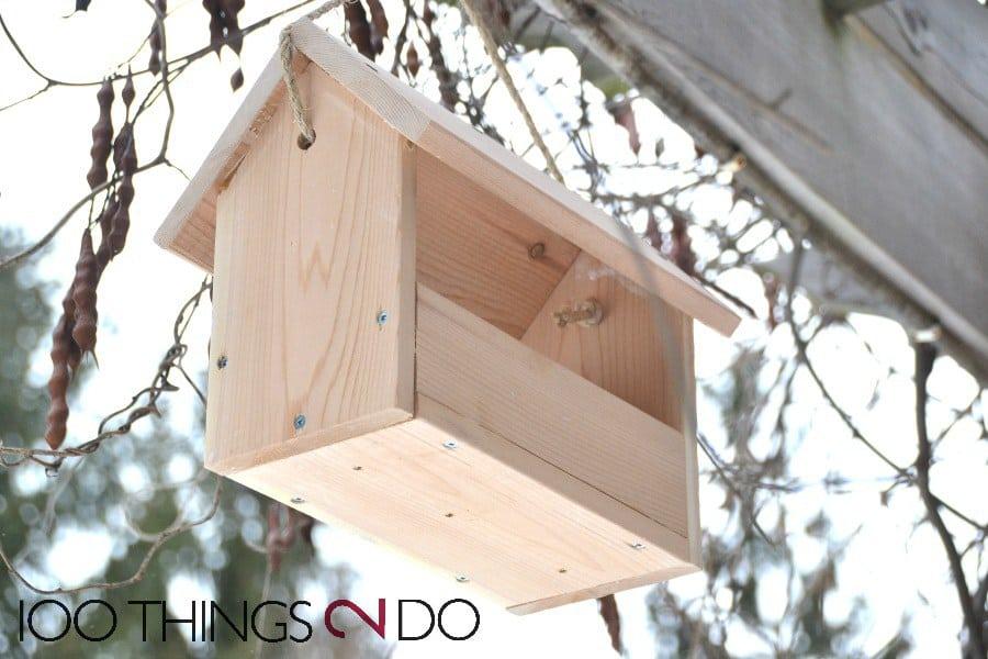 $4 bird feeder