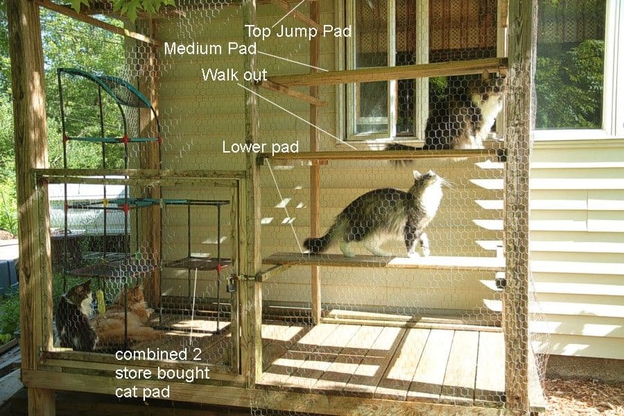 All seasons cat habitat with jump boards