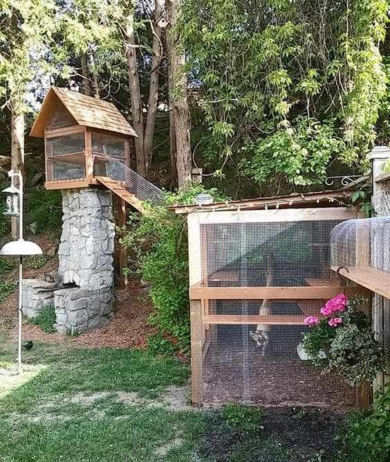 Large outdoor cat jungle gym