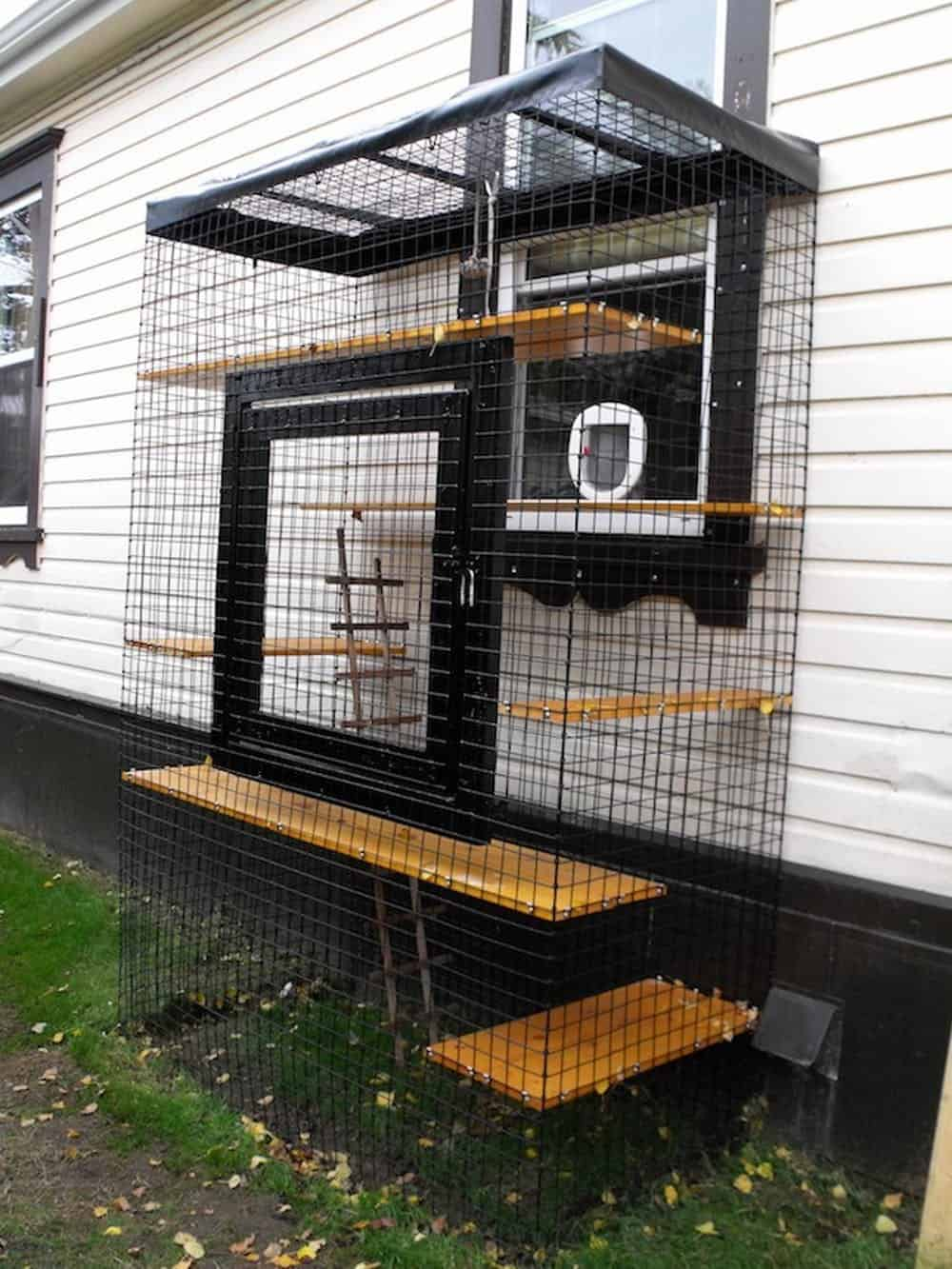 Outdoor cat enclosure with a rain cover