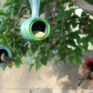 Take Care of Your Feathery Friends with These DIY Bird Feeders
