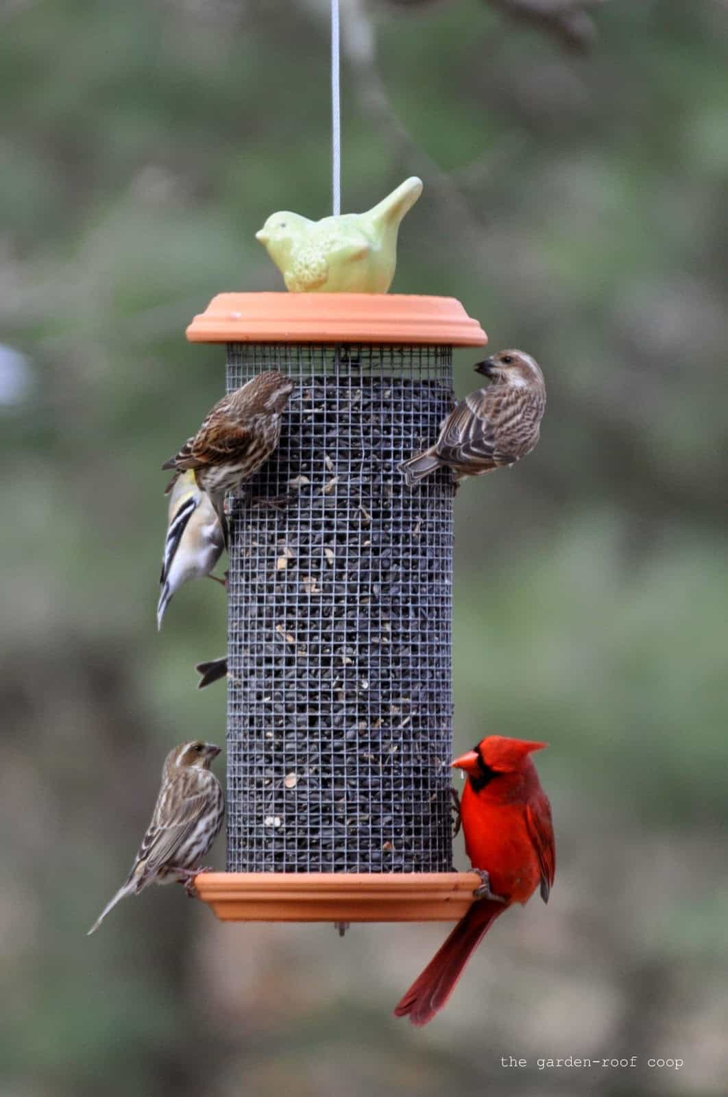 Tower bird feeder