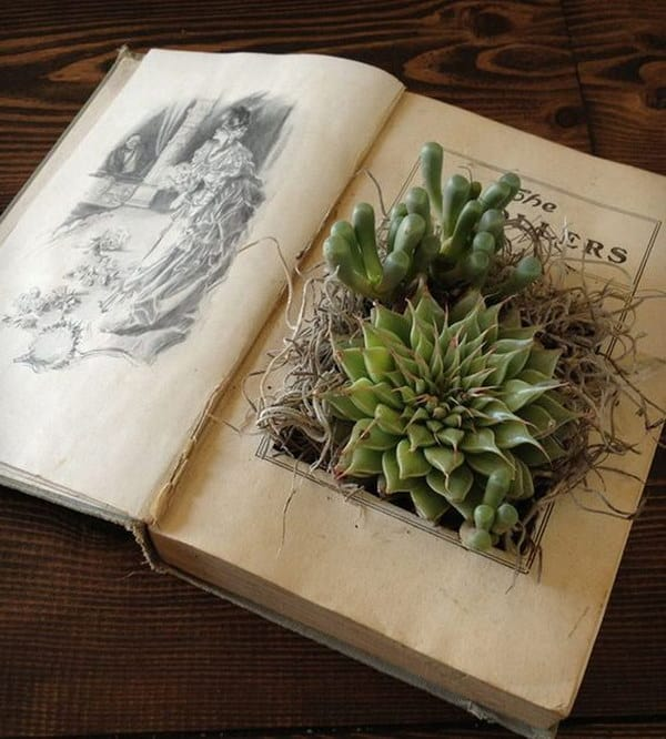 Upcycled book to succulent planter