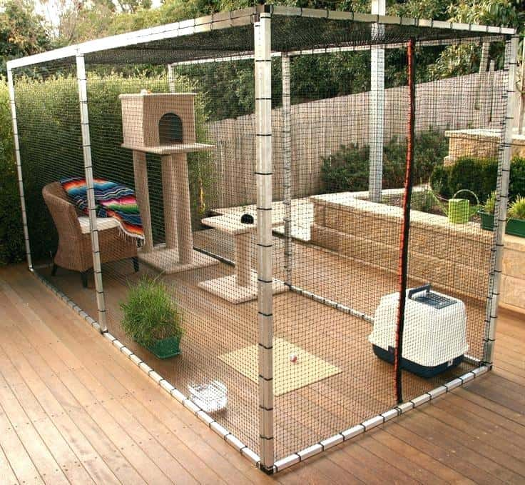Diy Cat Runs So Your Furry Friends Can, Outdoor Cat Kennel Ideas