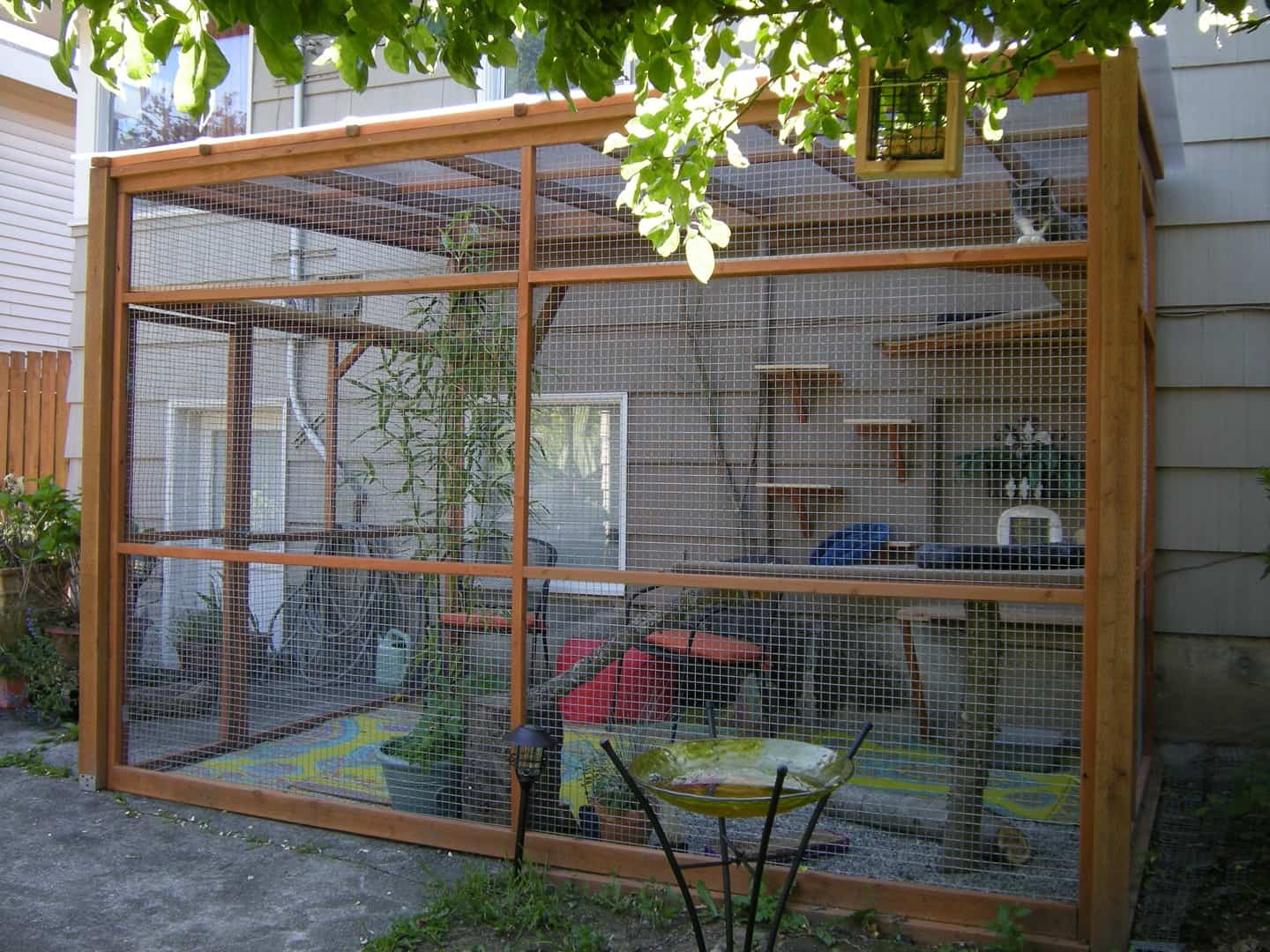 Wooden frame enclosure with wall climbers and chairs for sitting